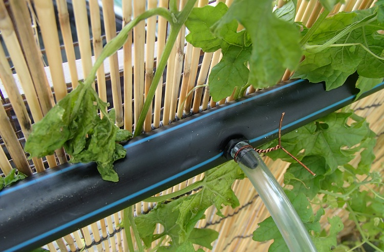 Трубы для полива на даче